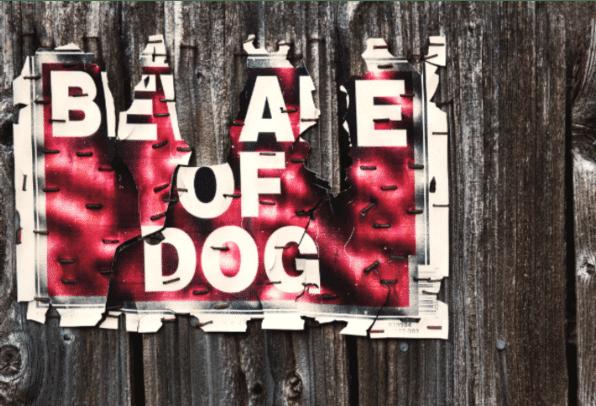 local dog laws in australia