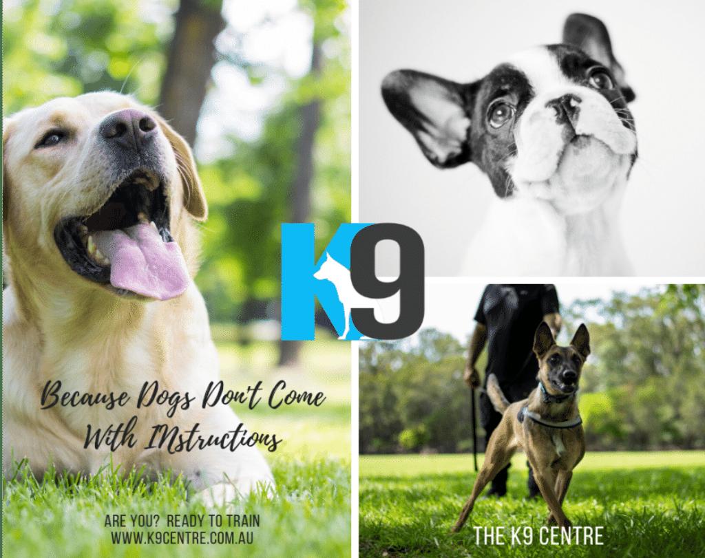 dog training with The K9 Centre - K9 Calmsmart