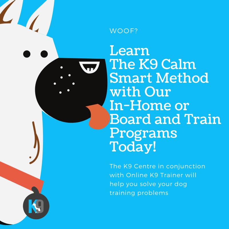 Our K9 Smart Dog Training Programs