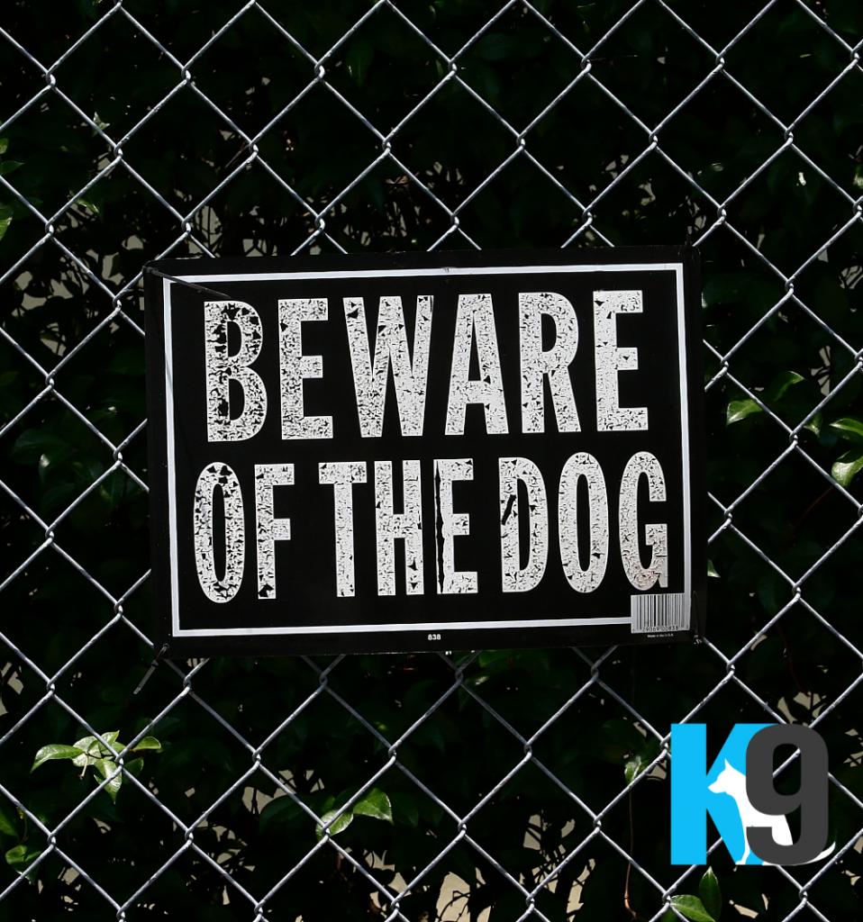 Beware of the Dangerous Dog